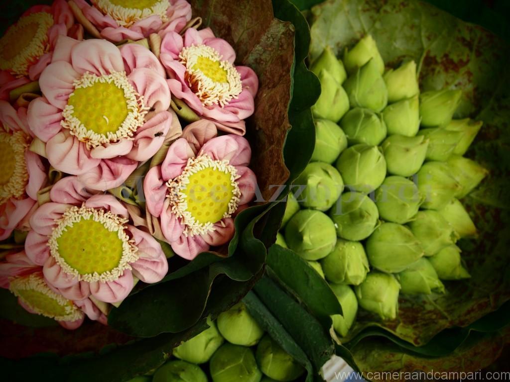 Delicate arrangements adorne the flower market