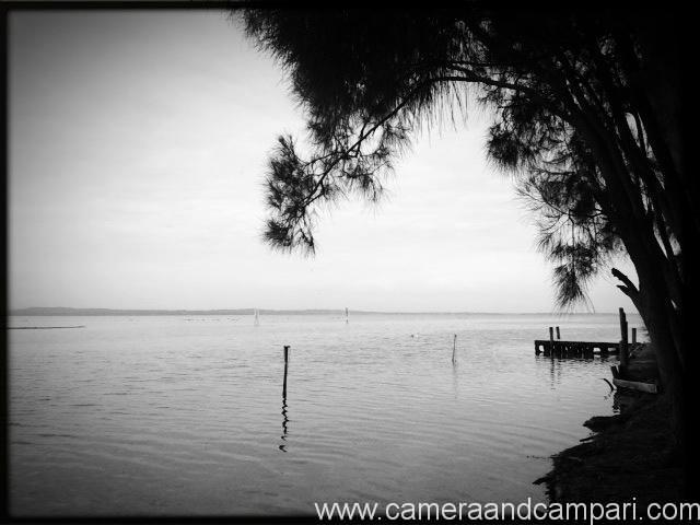 Serenity Gardens overlooking Tuggerah Lakes, NSW.